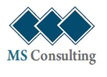 ms-consulting