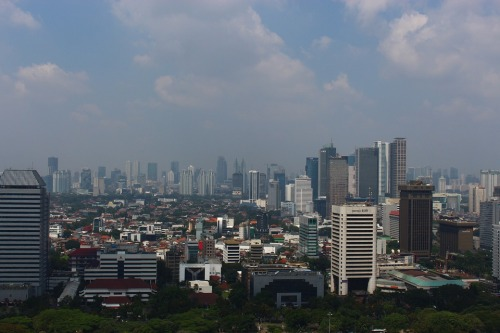 indonesio